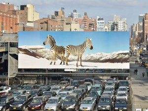 Zebra Billboard