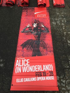 (1) Alice in Wonderland